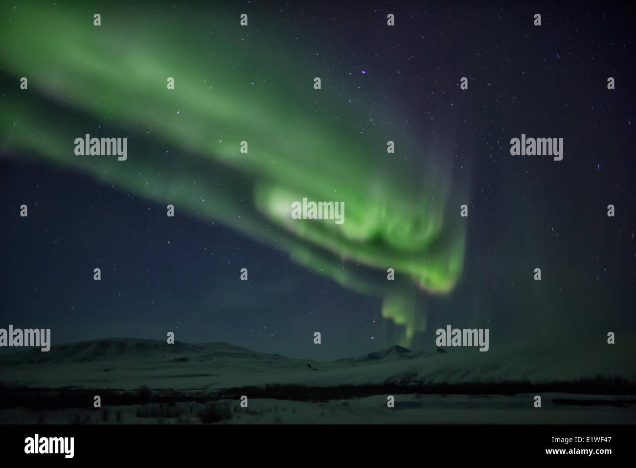 Northern lights or aurora borealis shimmer in the sky above the Dempster Highway. - Stock Image