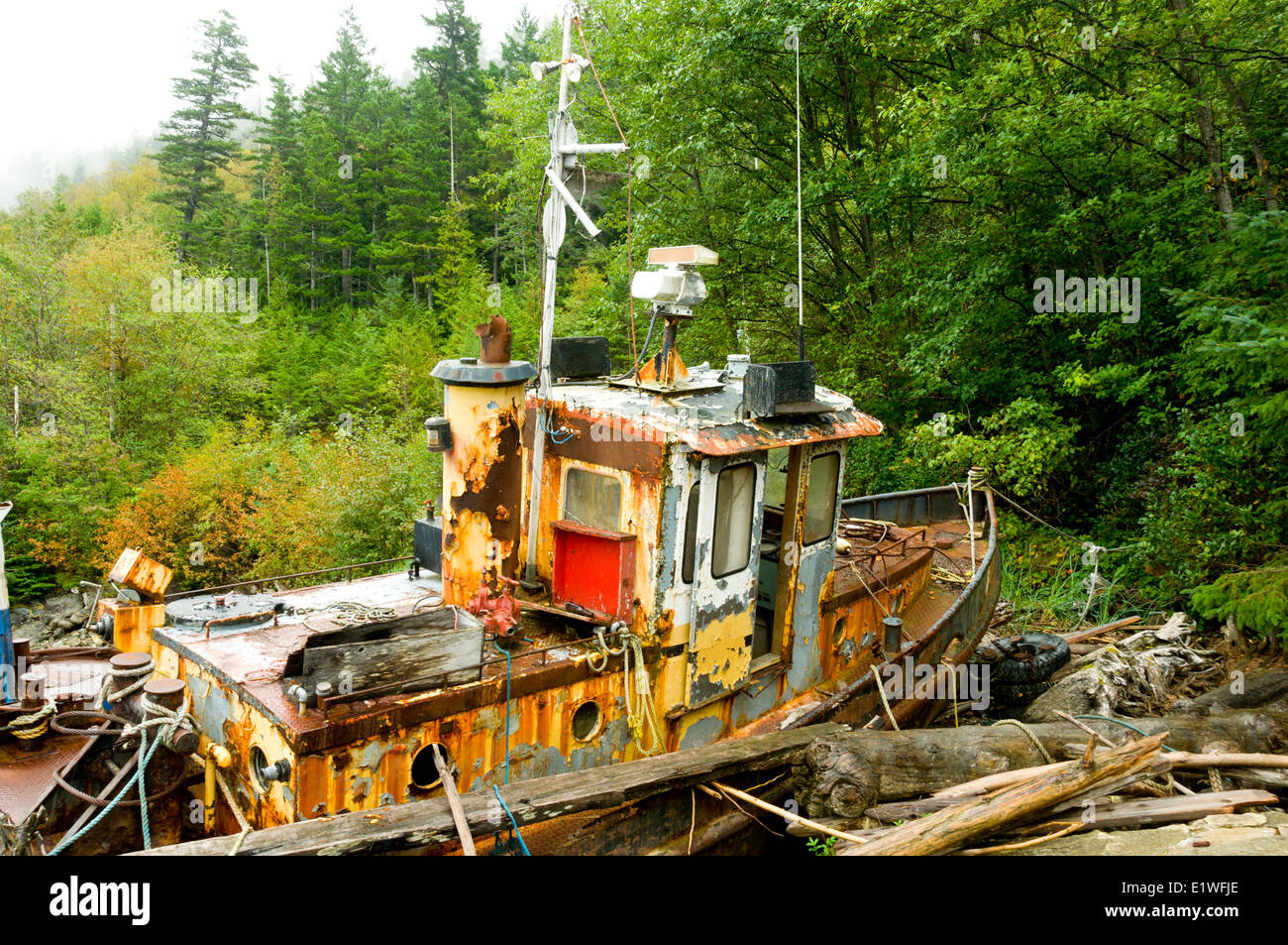 An long-retired fishing boat collects moss on the shores of North Bentinck Arm, Bella Coola, British Columbia - Stock Image