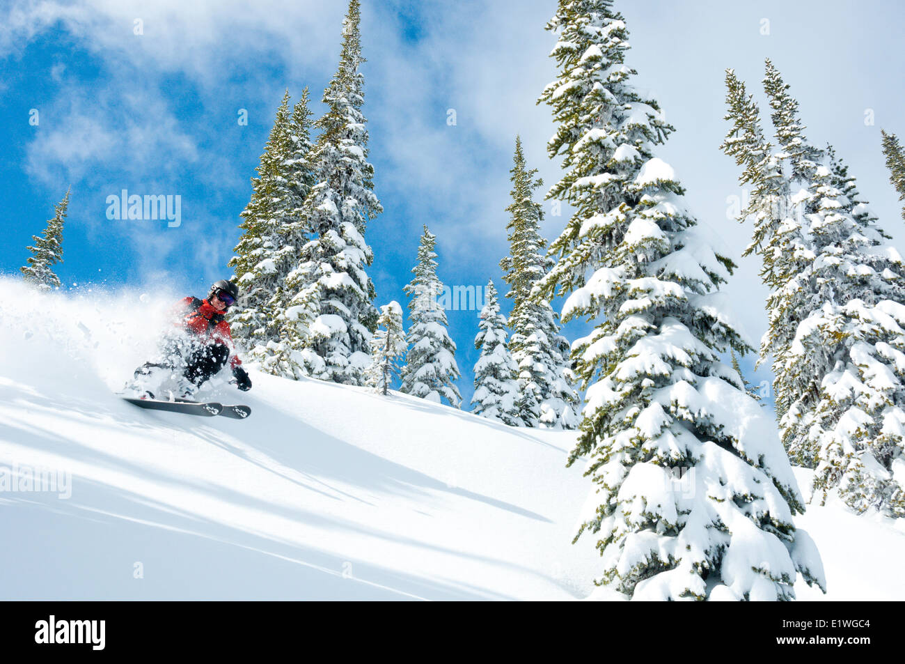 A woman skiiing in blue skies and powder at Whitewater Winter Resort, Nelson, British Columbia - Stock Image