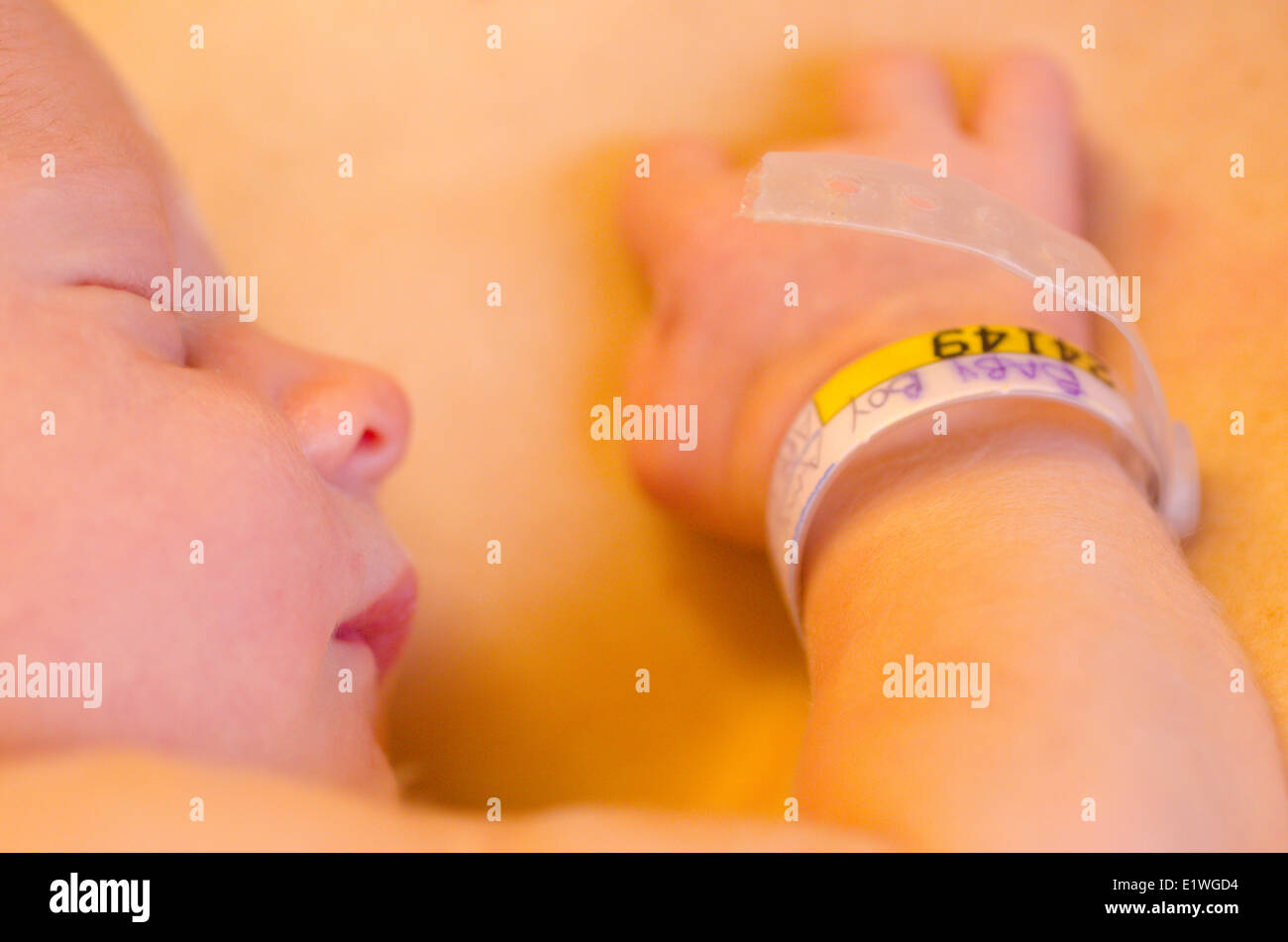 A one-day old newborn baby is fresh out of the womb and catalogued in the hospital nursery - Stock Image