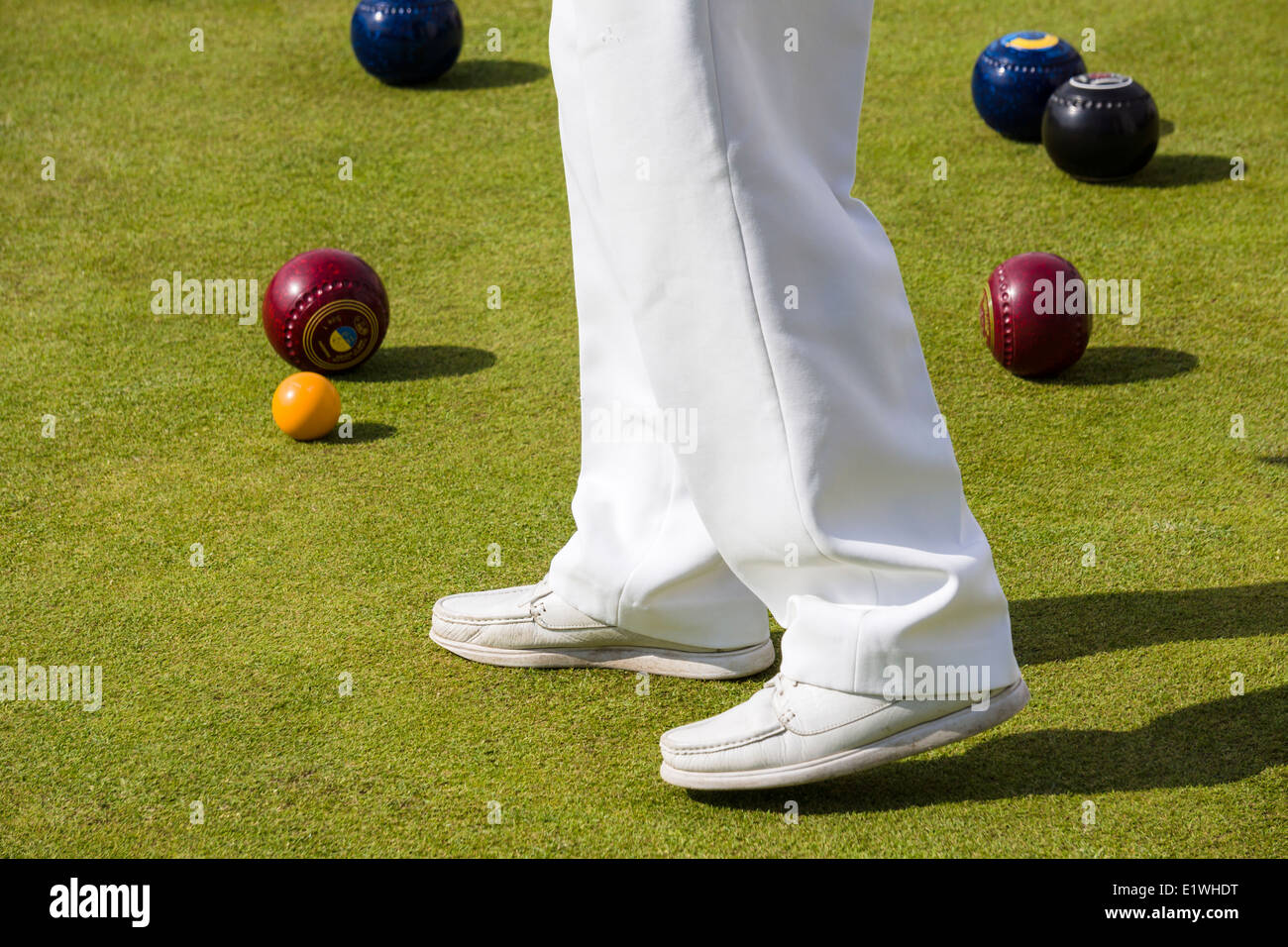 A Bowler observes the 'Jack' during a game of Lawn Bowls in the sunshine on a bowling green in the UK. - Stock Image