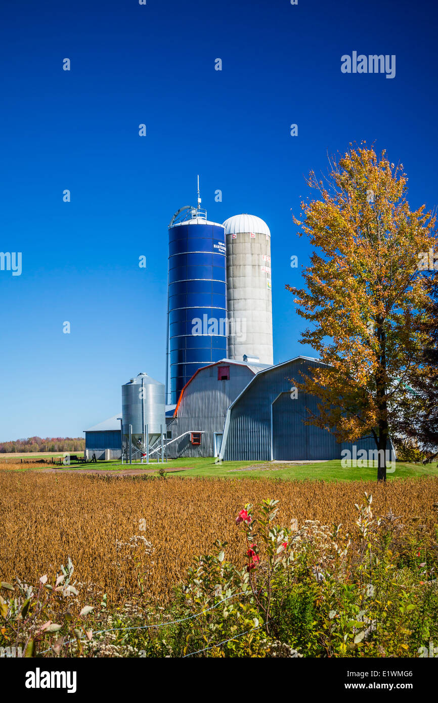 An Eastern Townships farm barn and silo, Quebec, Canada. - Stock Image
