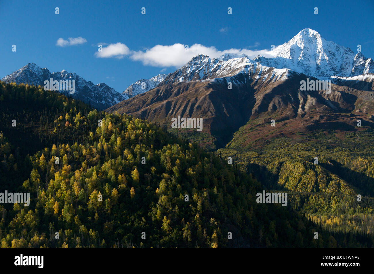 Scene of first snows on Chugach Mountains along Glenn Highway, Alaska, USA - Stock Image