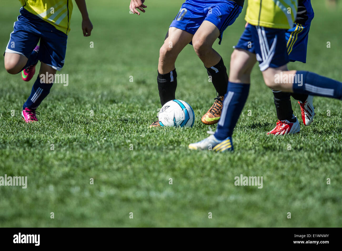 Teenage soccer action, fighting for possession. Calgary, Alberta, Canada - Stock Image