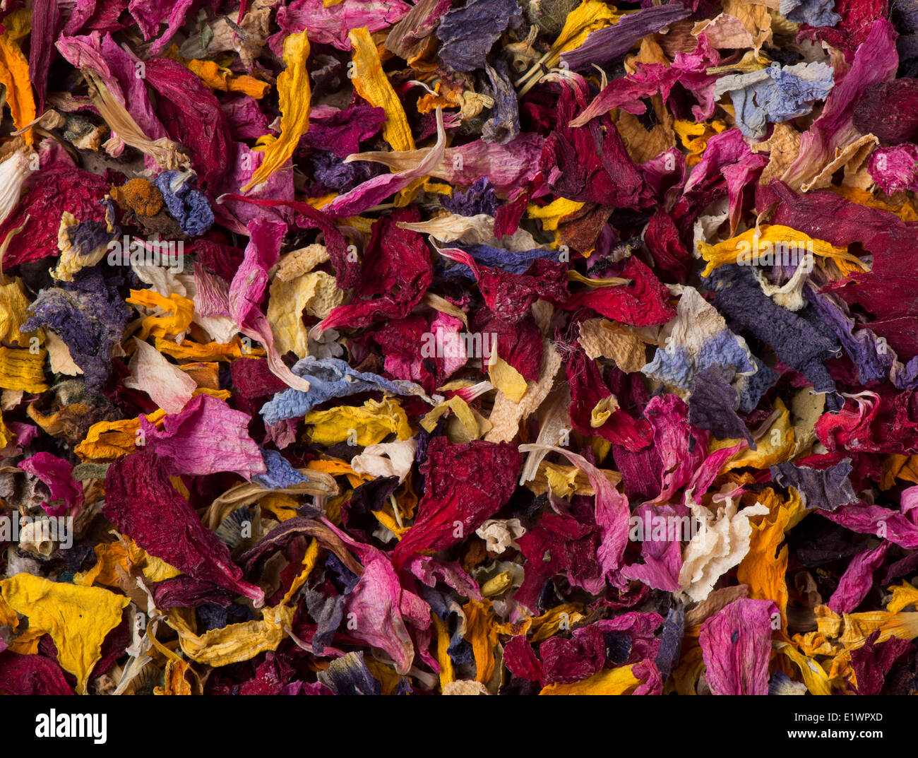 Dried Flower Petals - Stock Image