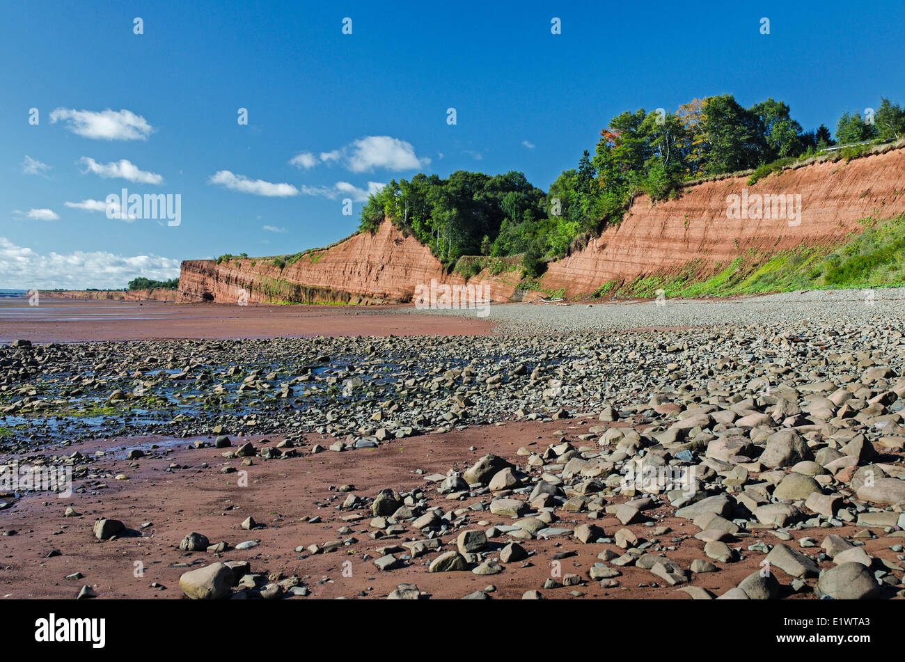 Triassic sedimentary cliffs at Blomidon Provincial Park face constant erosion from Bay of Fundy tides. Minas Basin, - Stock Image