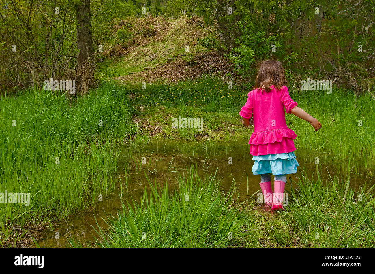 Young girl playing in puddles, Enderby, British Columbia, Canada. - Stock Image