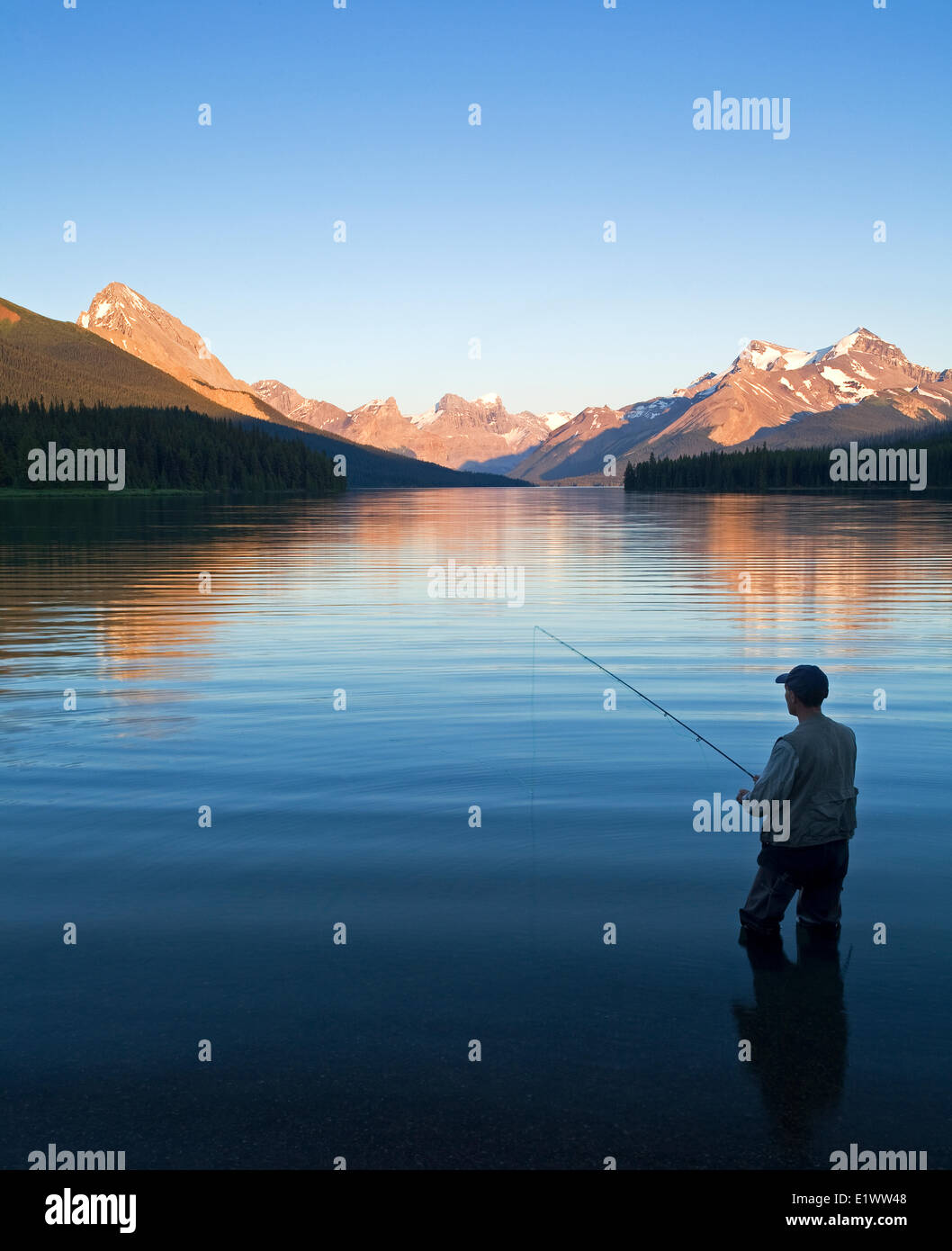 Middle age male fly fishing on Maligne Lake, Jasper National Park, Alberta, Canada. Stock Photo