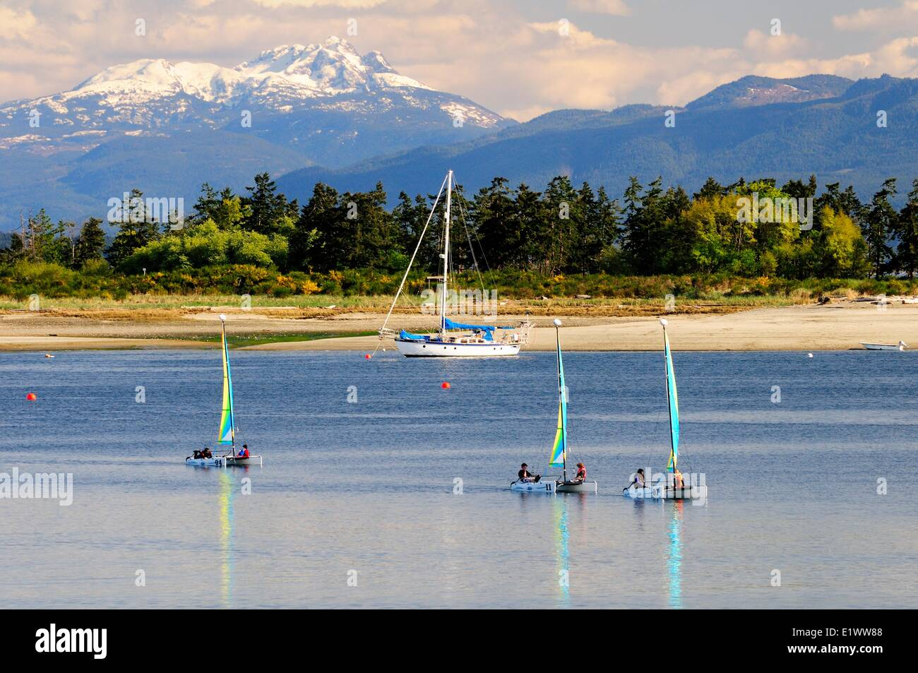 Three small catamaran sailboats sailing around Goose Spit near Comox, BC.  Mt. Arrowsmith on Vancouver Island is - Stock Image