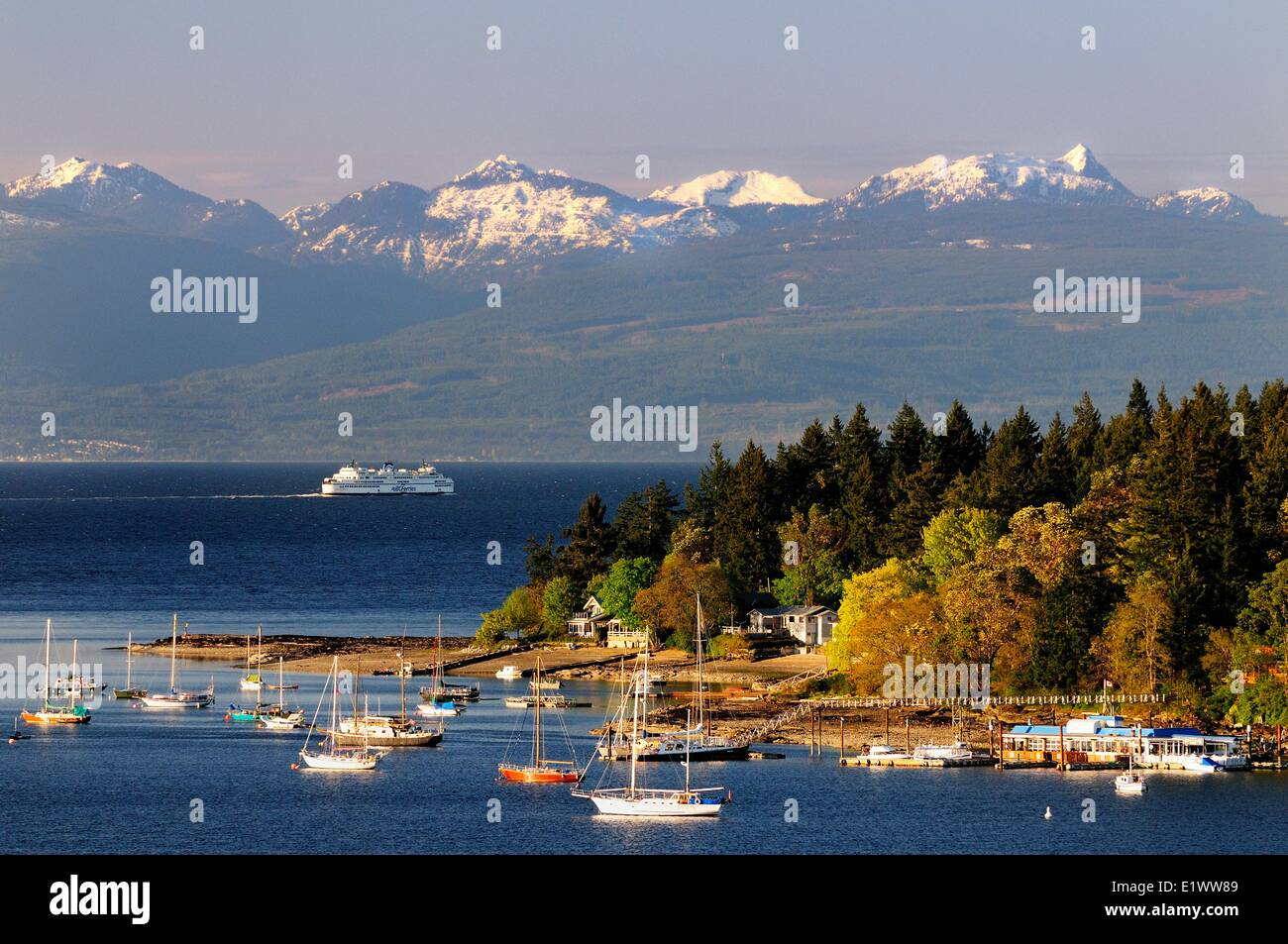 Boats anchored in the bay by Protection Island near Nanaimo BC.  The BC Ferry Queen Cowichan sails to Vancouver - Stock Image