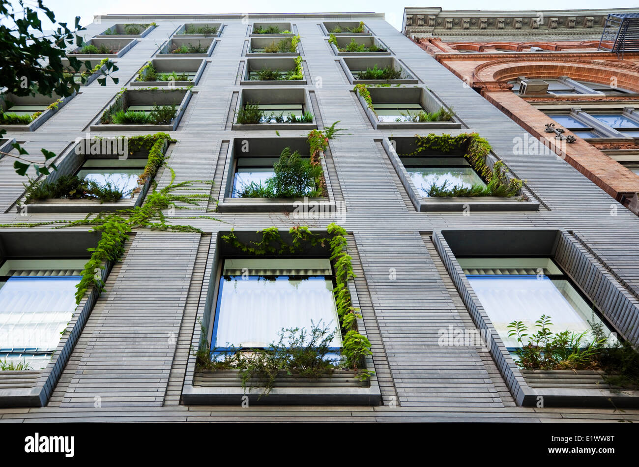 Vertical garden created by discreetly integrating planter boxes on every window sill this building thereby allowing - Stock Image