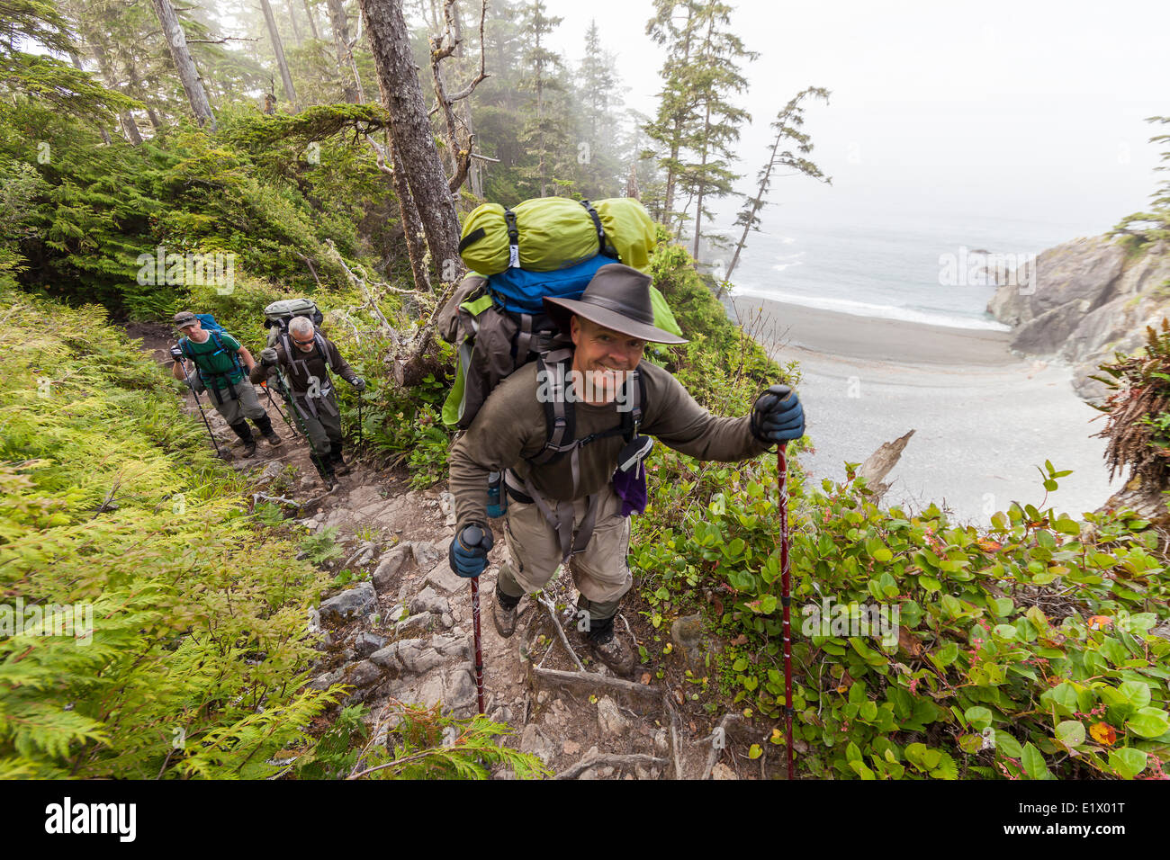 Hikers near Km 32 on the West Coast Trail negotiate a section trail with a particularly steep drop.  West Coast - Stock Image