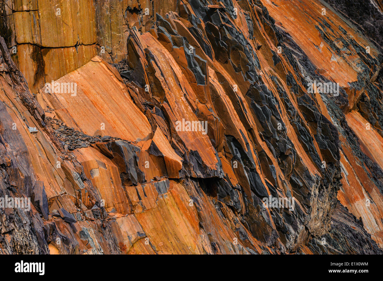 Oxidized shale at Green Point site the global stratotype for the Cambrian Ordovician geologic boundary. Gros Morne - Stock Image