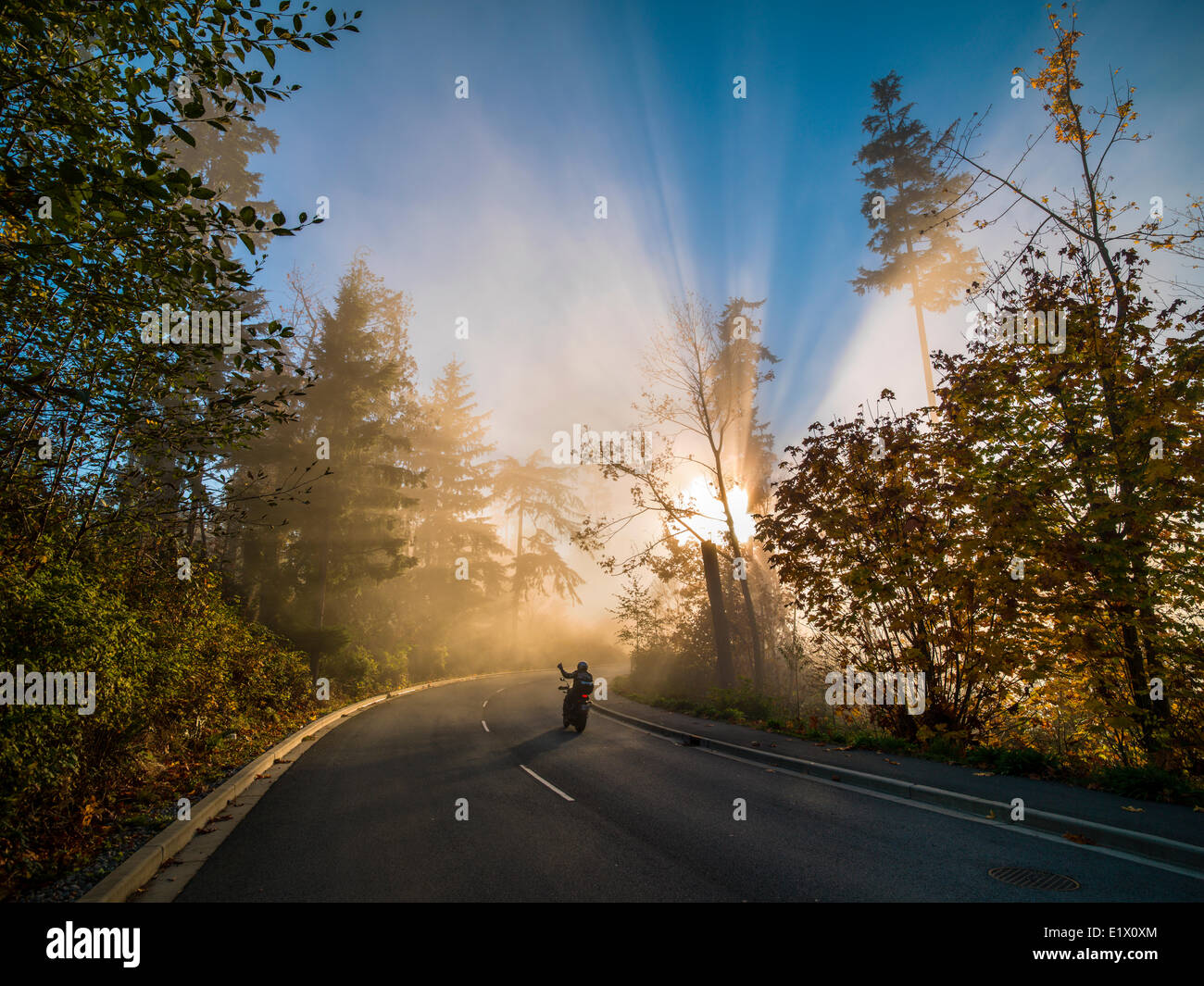 Motorcycle in fog. Stanley Park Drive. - Stock Image