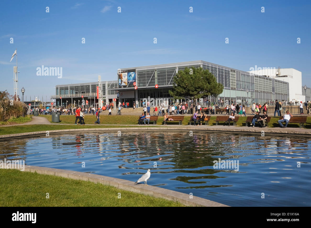 Man-made pond and the Centre des Sciences de Montreal (Montreal Science Centre) in the Old Port of Montreal in autumn, - Stock Image