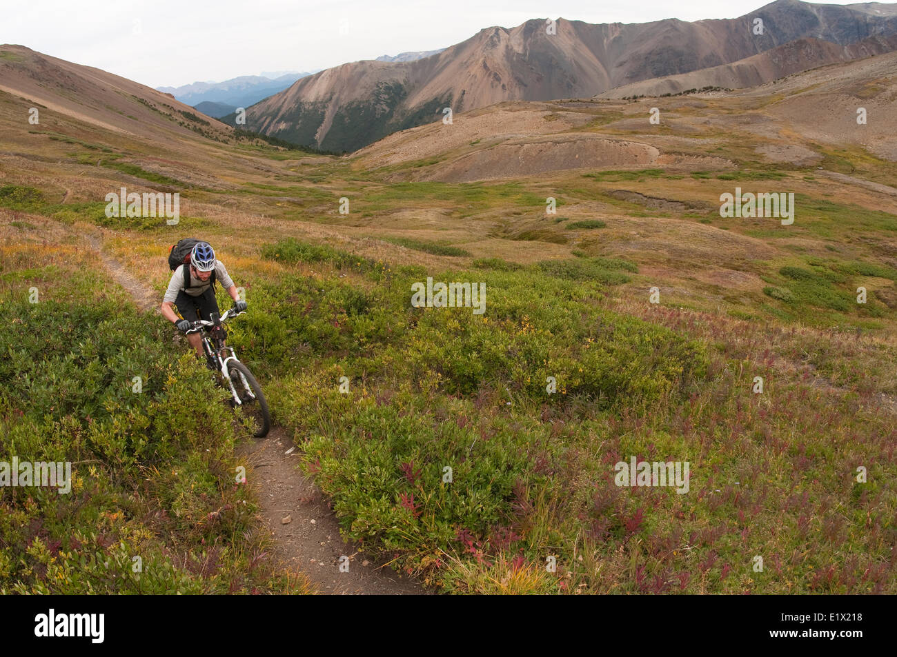 Mountain bike touring in Spruce Lake Protected Area. South Chilcotin Mountains. British Columbia, Canada - Stock Image