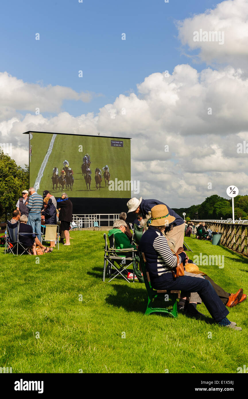 Salisbury Racecourse is a flat racecourse in the United Kingdom featuring thoroughbred horse racing, 3 miles southwest - Stock Image