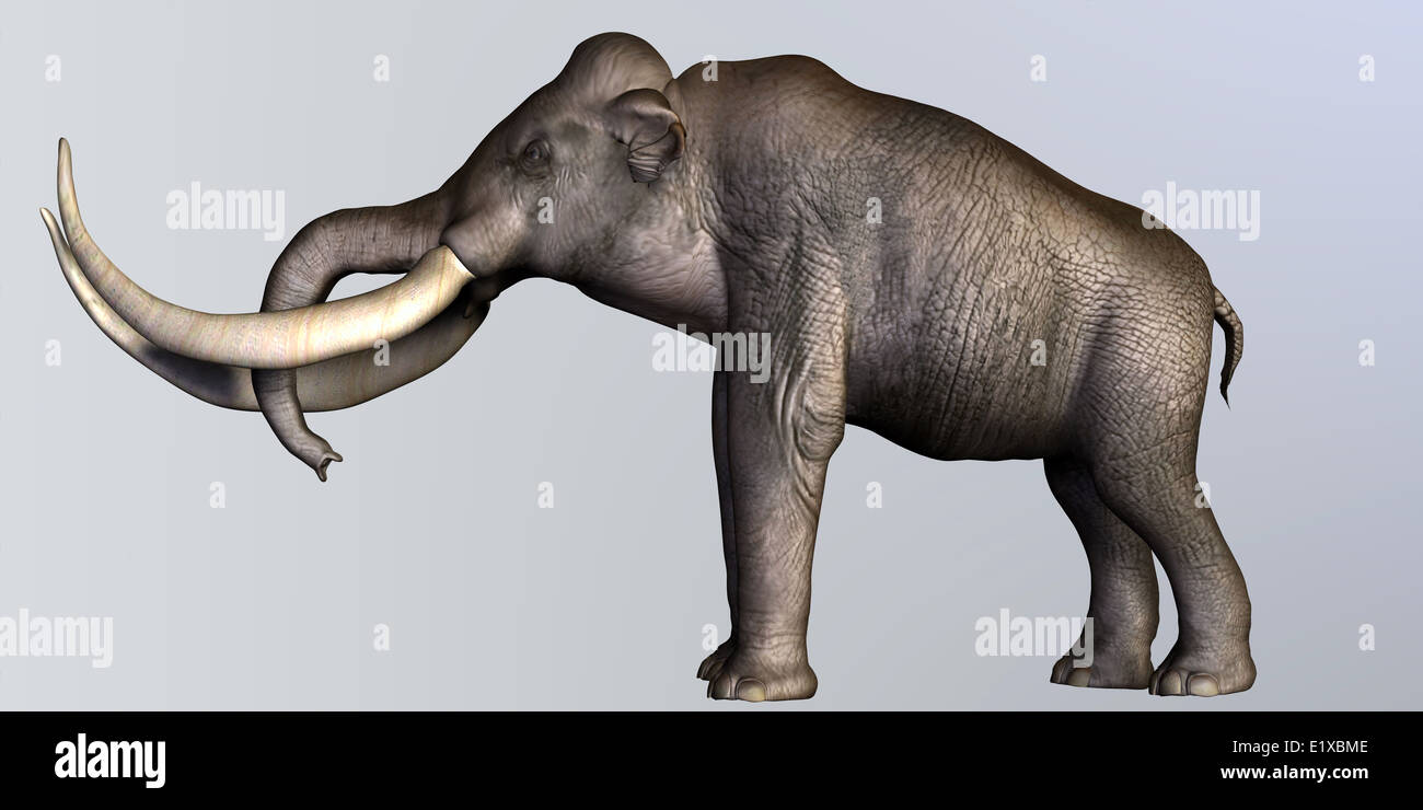 The Columbian Mammoth lived during the Quaternary Period of North and Middle America. - Stock Image