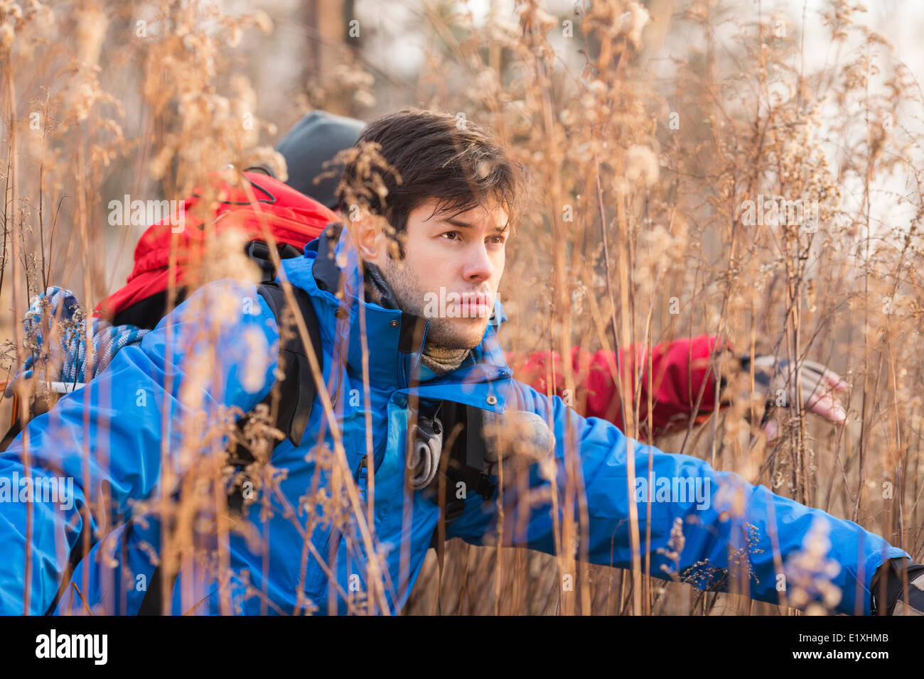 Male hikers in field - Stock Image