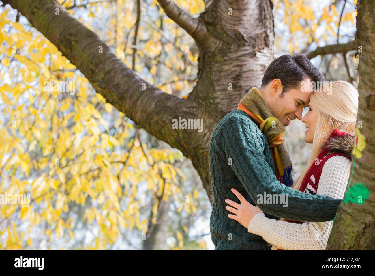 Side view of young couple hugging near autumn tree in park - Stock Image