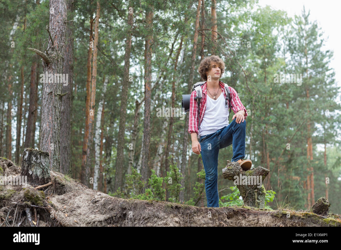 Full length of male backpacker standing in forest - Stock Image