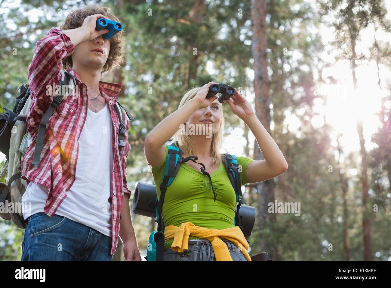 Hiking couple using binoculars in forest - Stock Image