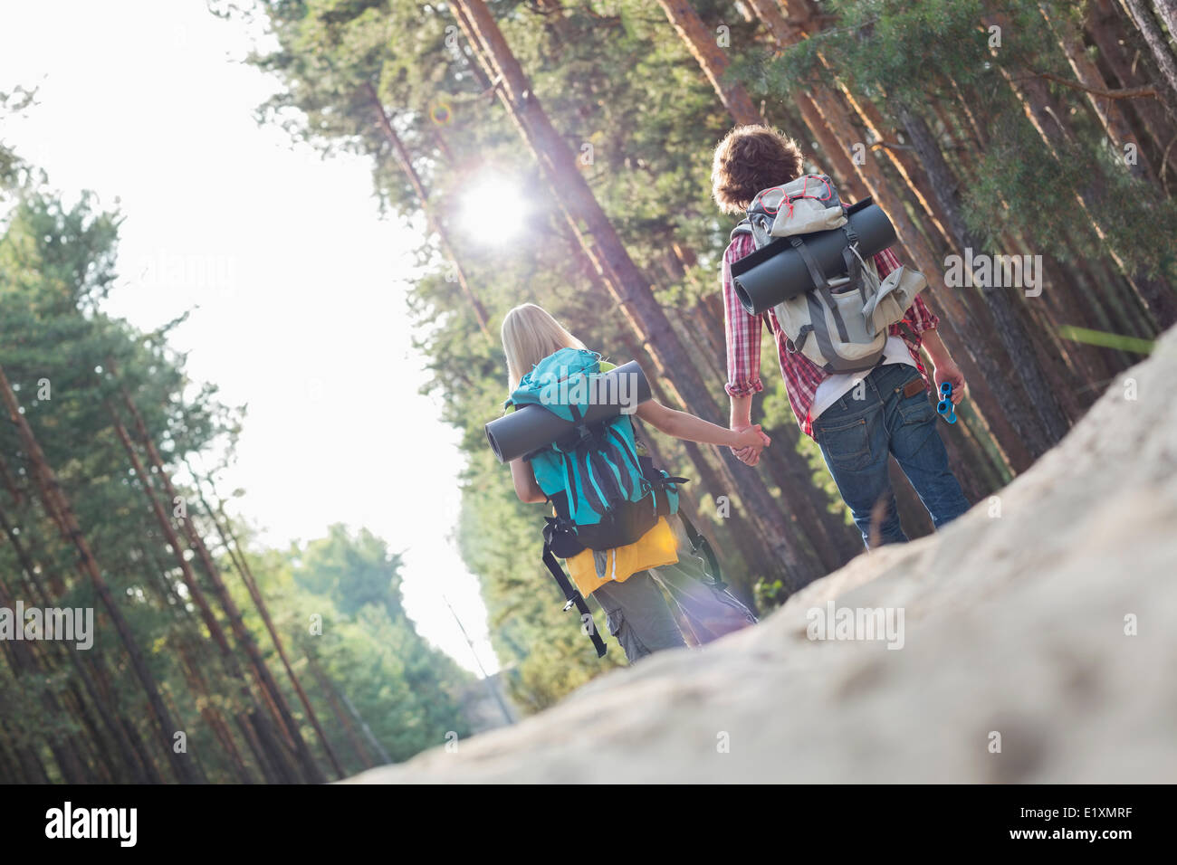 Rear view of hiking couple holding hands while walking in forest - Stock Image