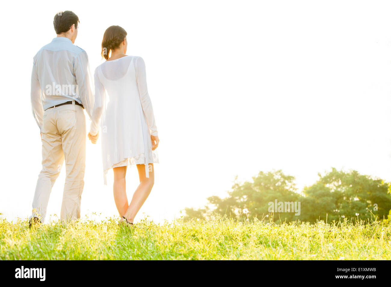 Rear view of young couple holding hands in park against clear sky - Stock Image