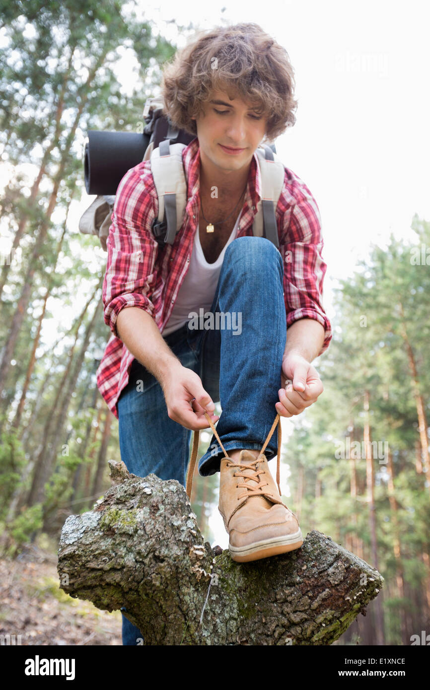 Full length of male backpacker tying shoelace in forest - Stock Image