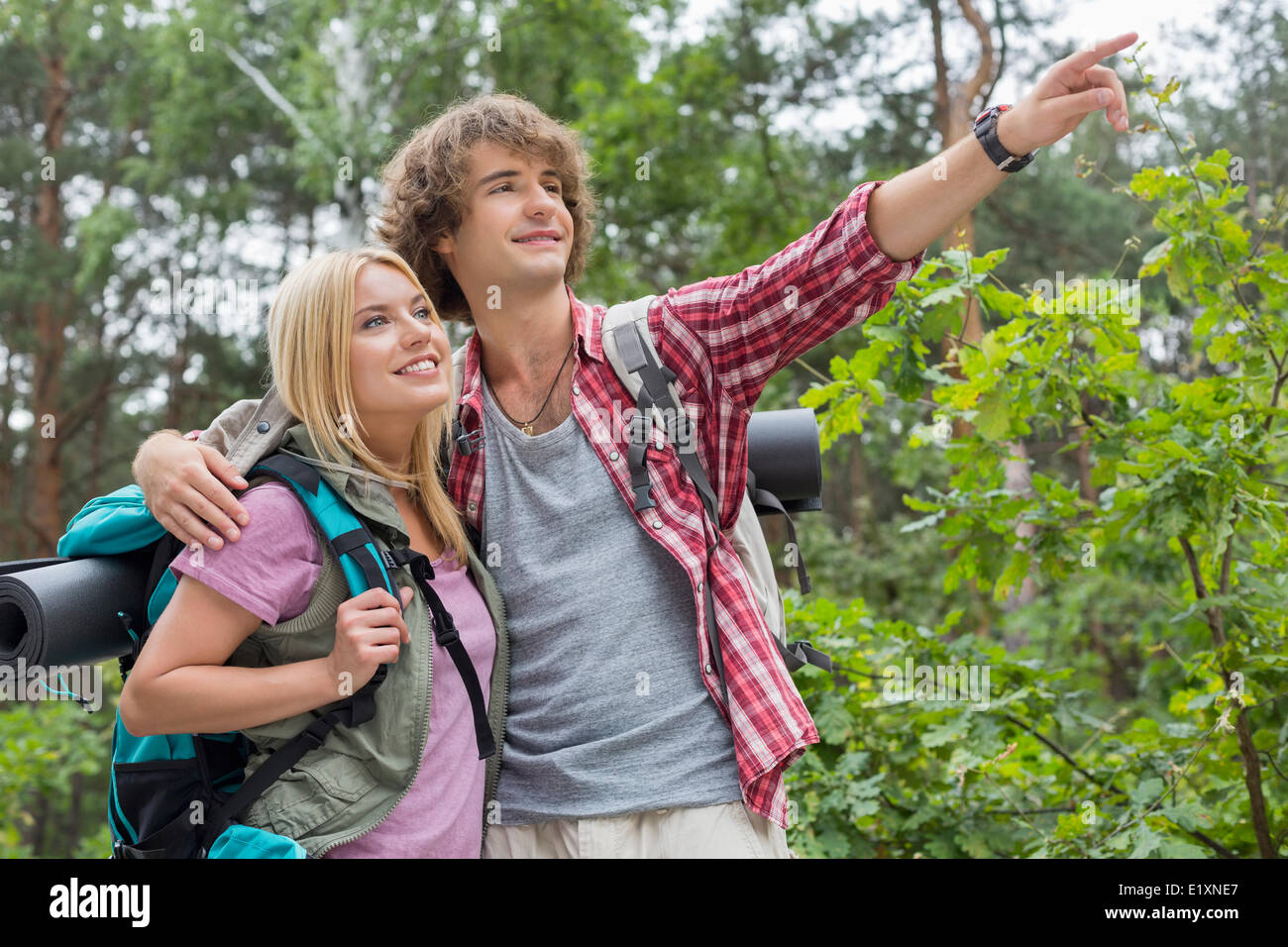 Young male hiker showing something to woman in forest - Stock Image