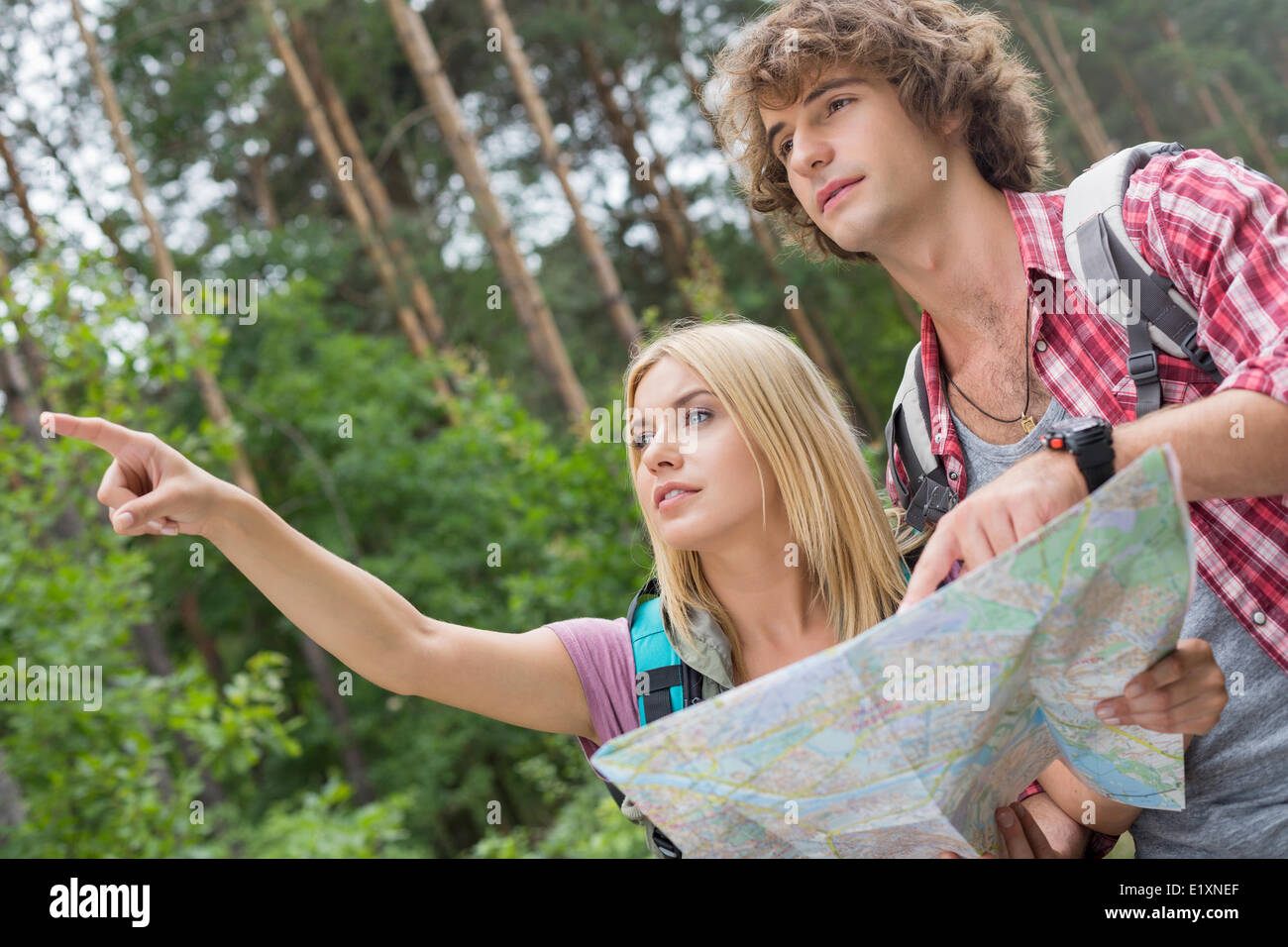 Hiking couple with map discussing over direction in forest - Stock Image
