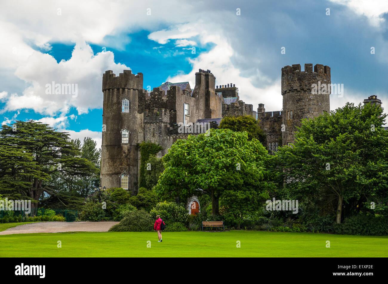Ireland, Dublin county, the Malahide castle and garden - Stock Image
