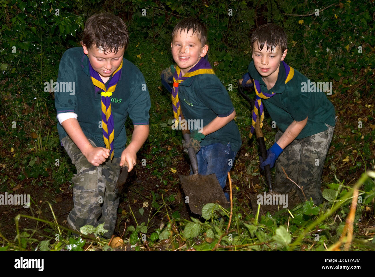 Three cubs cleaning foliage to make way for new hut, Liss, Hampshire, UK. - Stock Image
