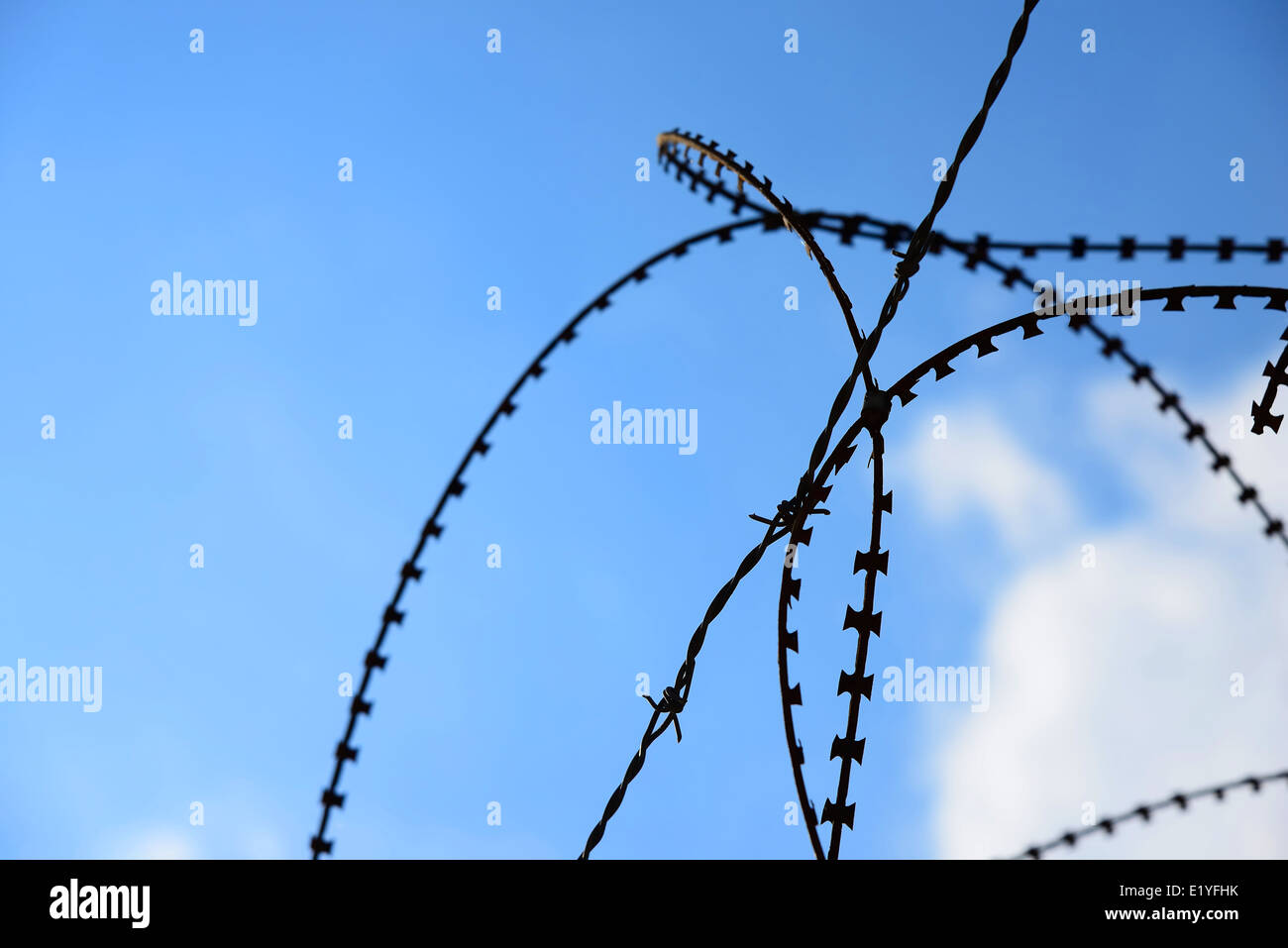 wire fence on a background of clear blue sky - Stock Image
