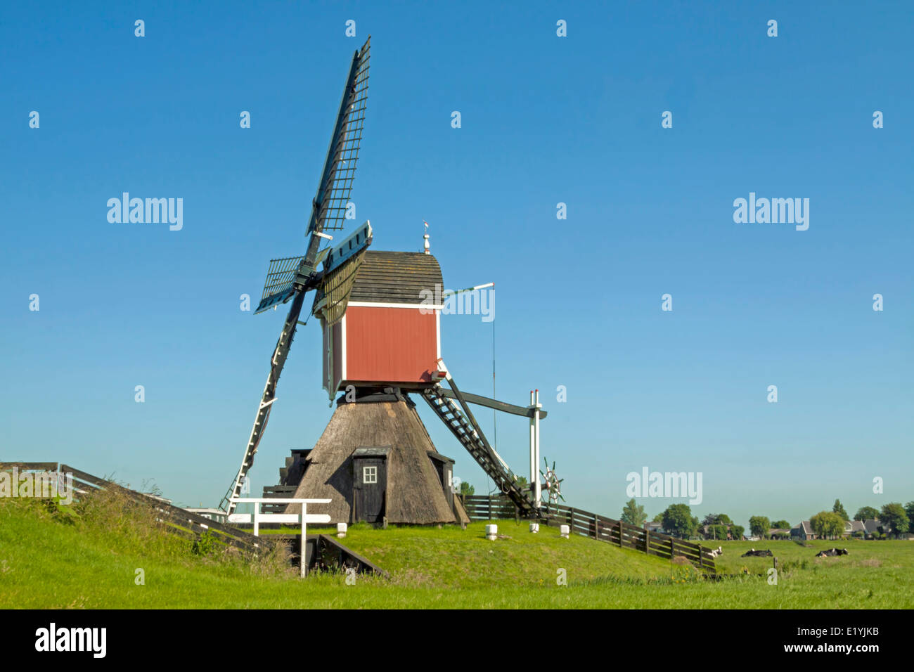 why are the dutch called dutch