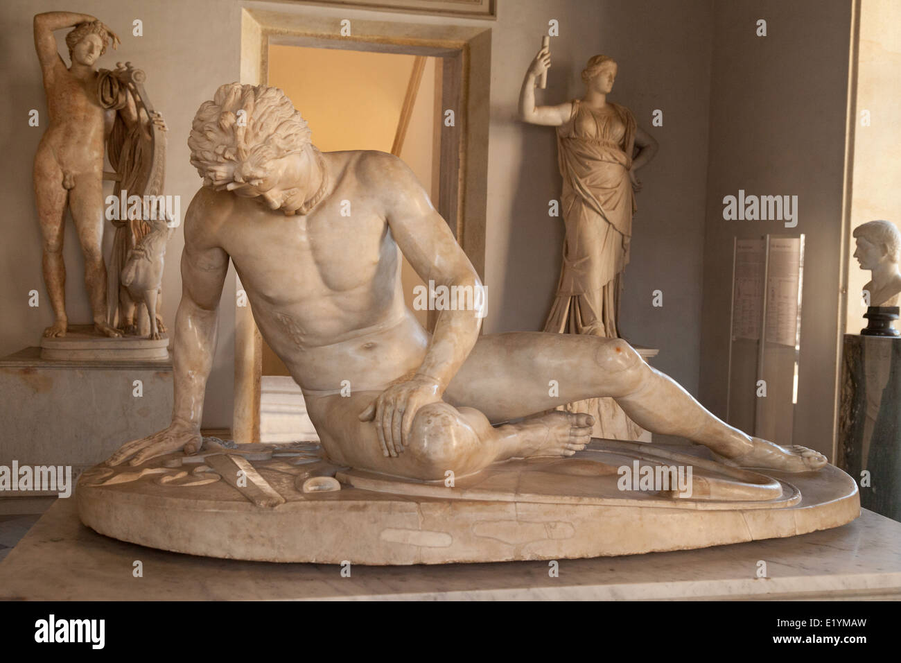 Dying Gaul statue in the Capitoline Museums (Musei Capitolini ) Rome Italy Europe - Stock Image