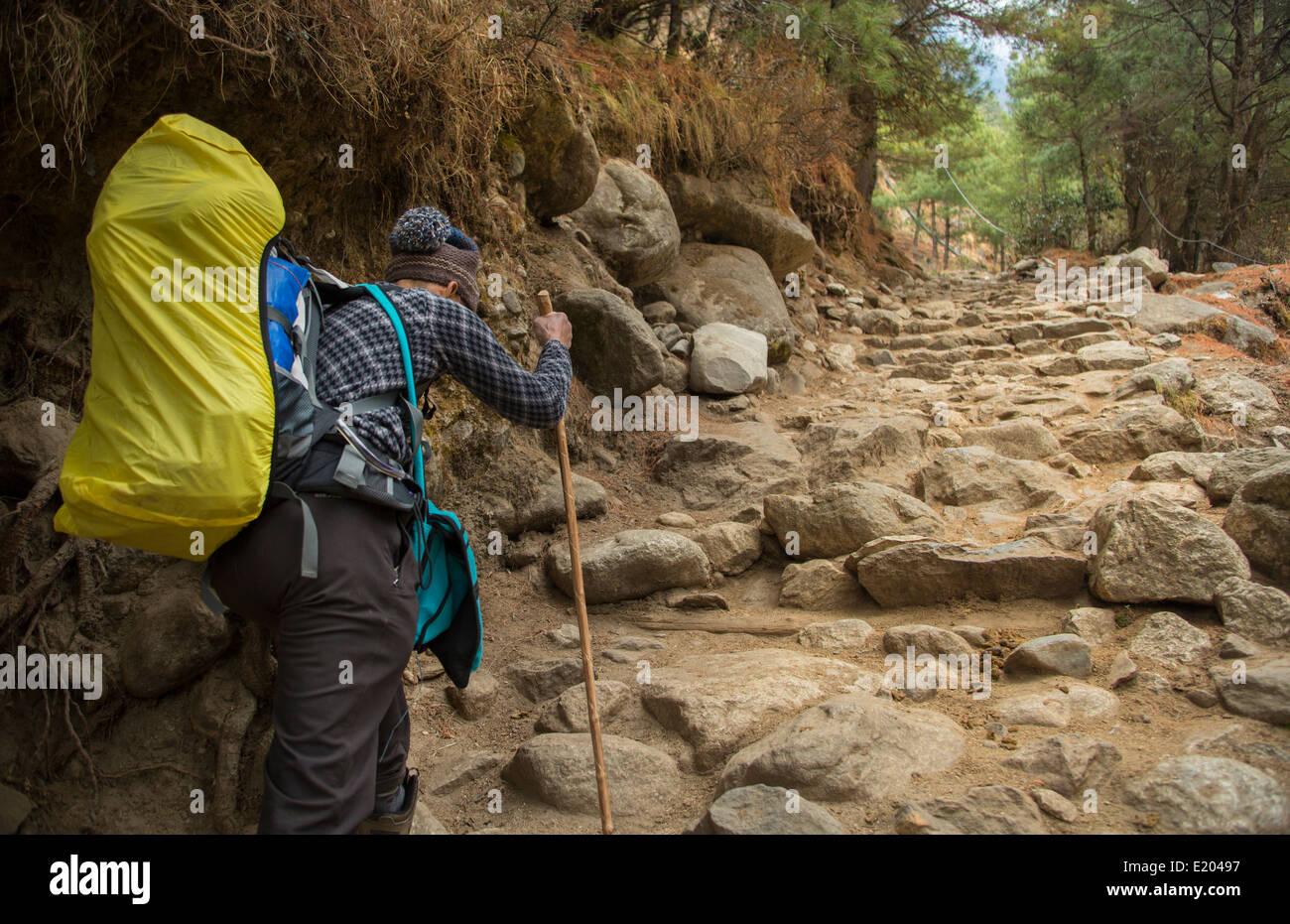 Nepal Himalayas Trekker walking up steep stairway in Solukhumbu remote Mt Everest 68 - Stock Image