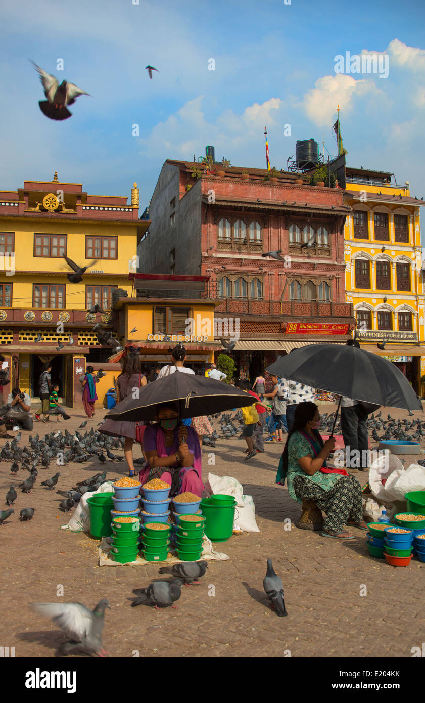 Kathmandu Nepal. Bird-feed vendors with the birds that flock to the Boudhanath Stupa, - Stock Image