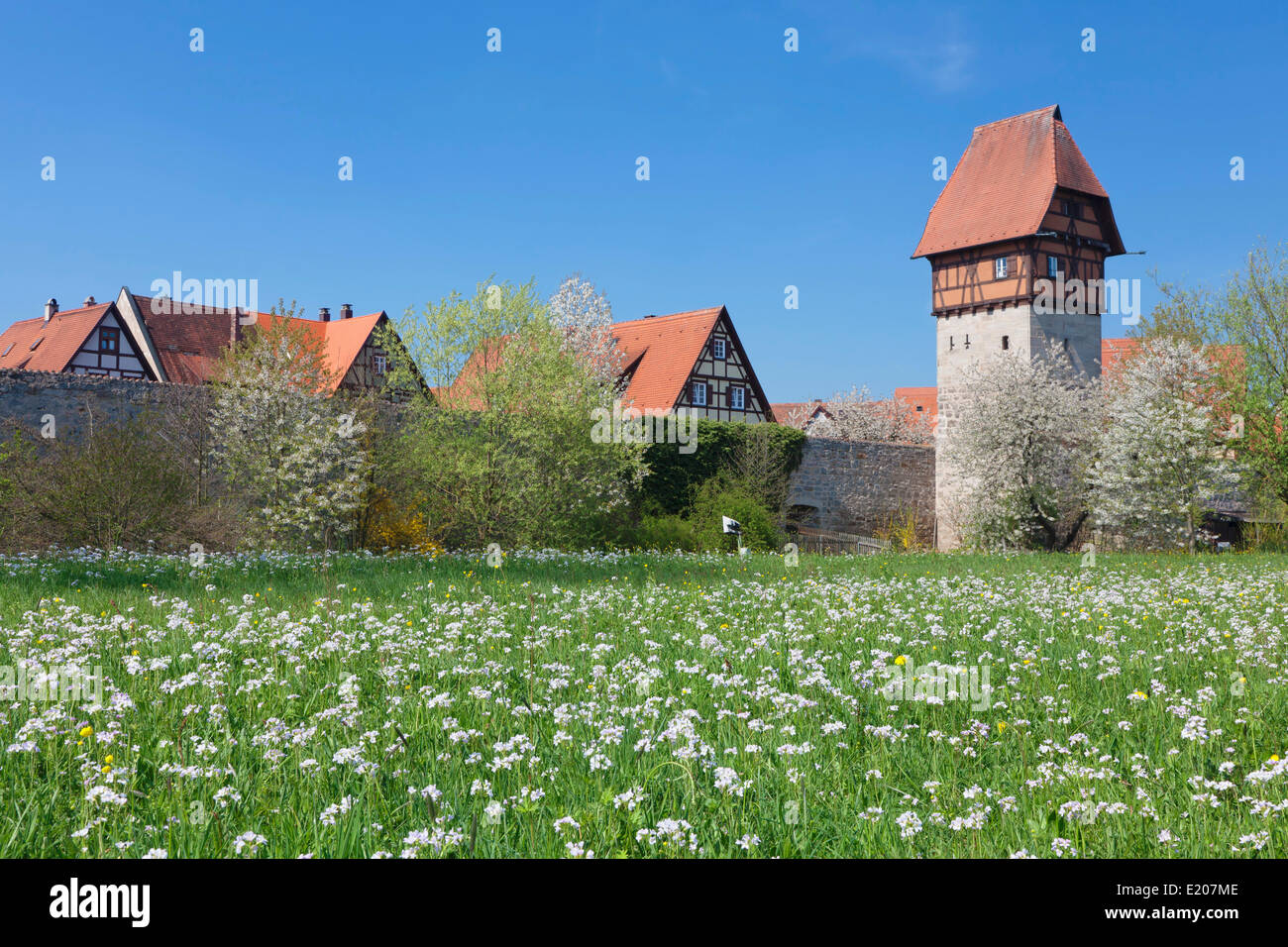 Bäuerlinsturm tower with city walls, Romantic Road, Dinkelsbühl, Middle Franconia, Franconia, Bavaria, - Stock Image