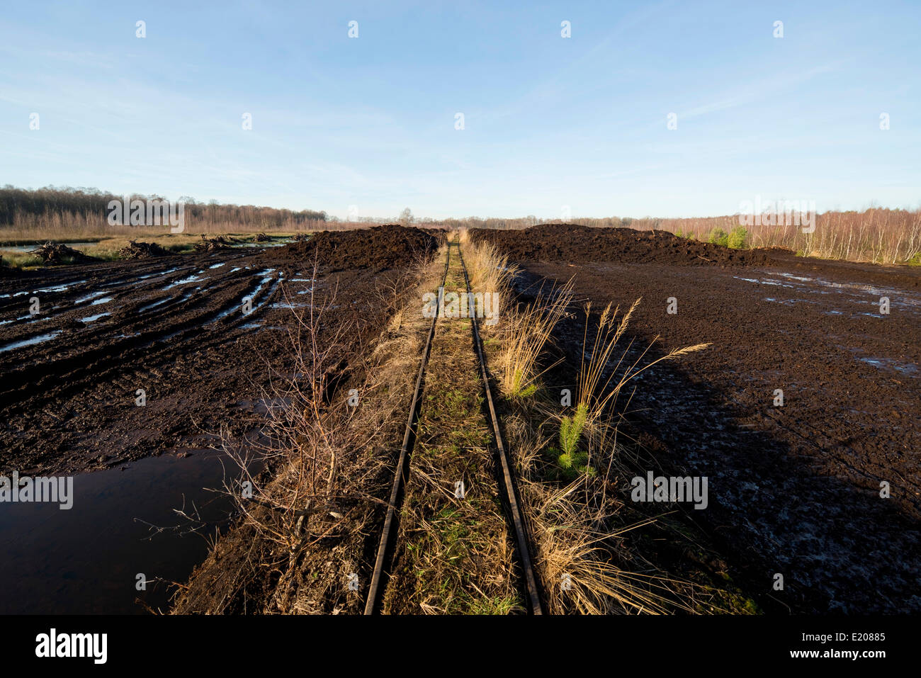 Peat cutting area and rail tracks to transport peat turves, Großes Moor Nature Reserve, near Gifhorn, Lower - Stock Image