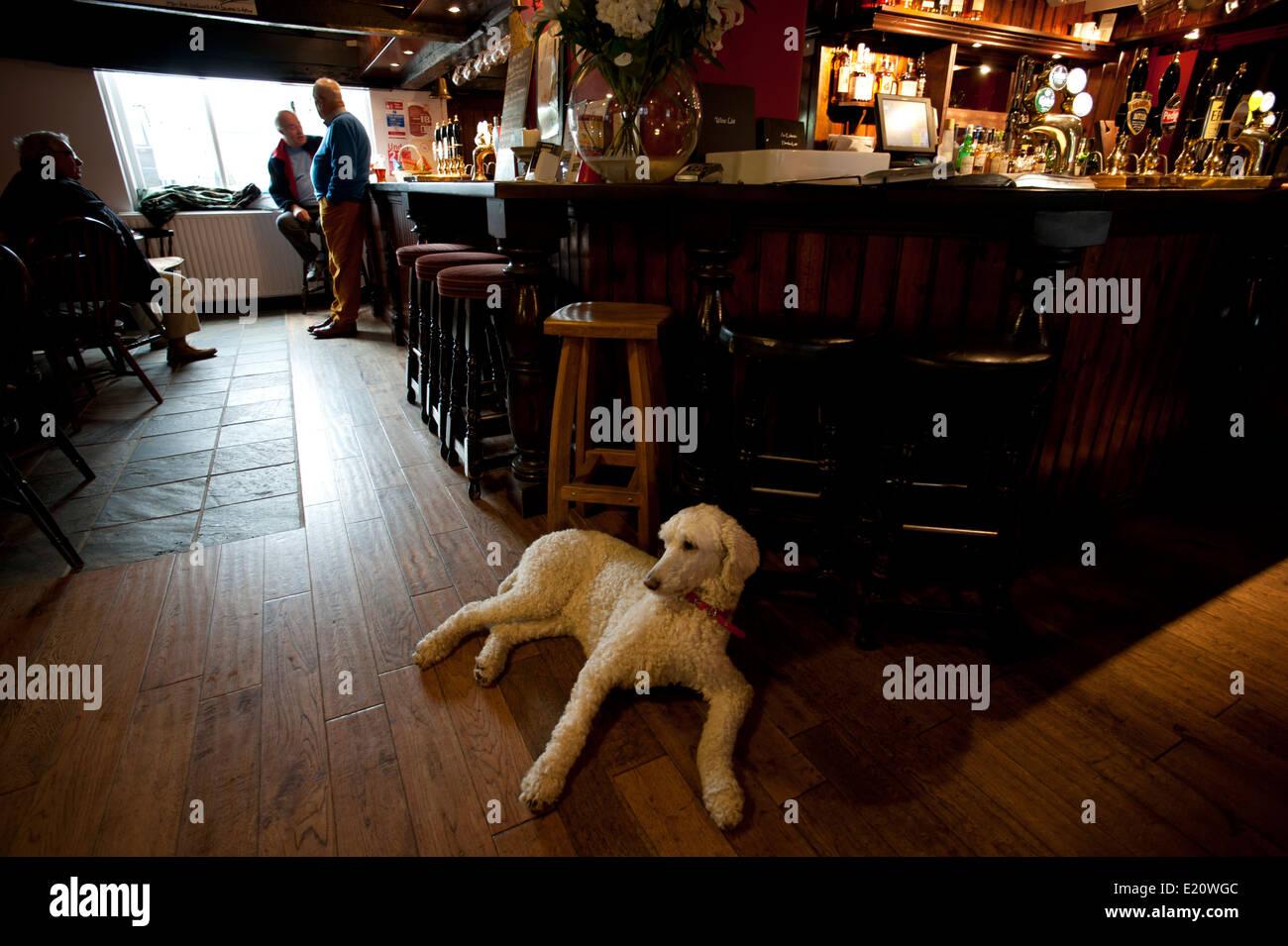 Devonshire Arms Pub, Cracoe, Yorkshire Dales National Park, Yorkshire, England,UK. June 2014 - Stock Image