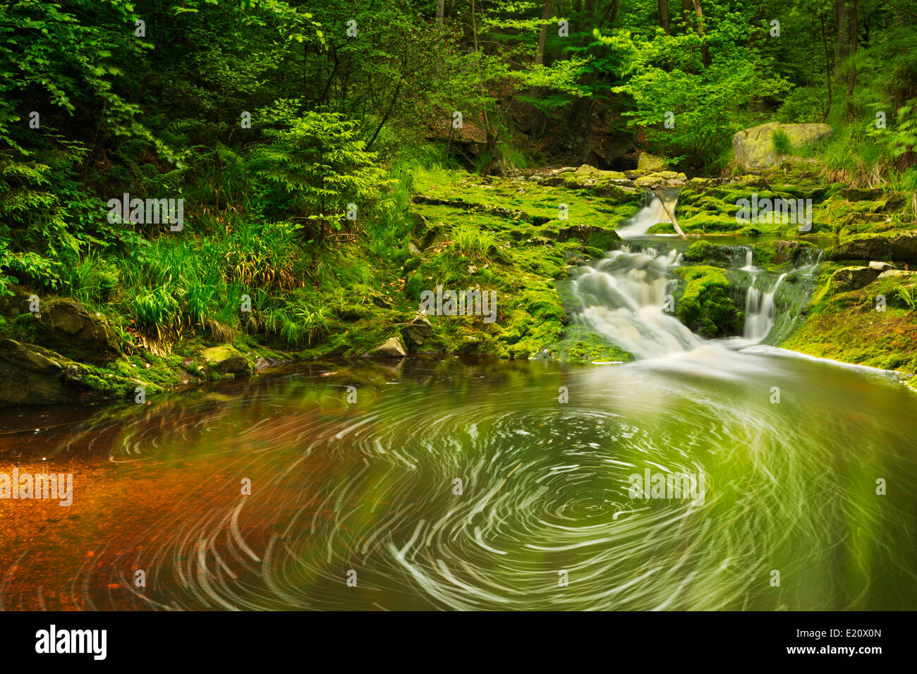A small waterfall in lush forest in the Ardennes, Belgium. - Stock Image