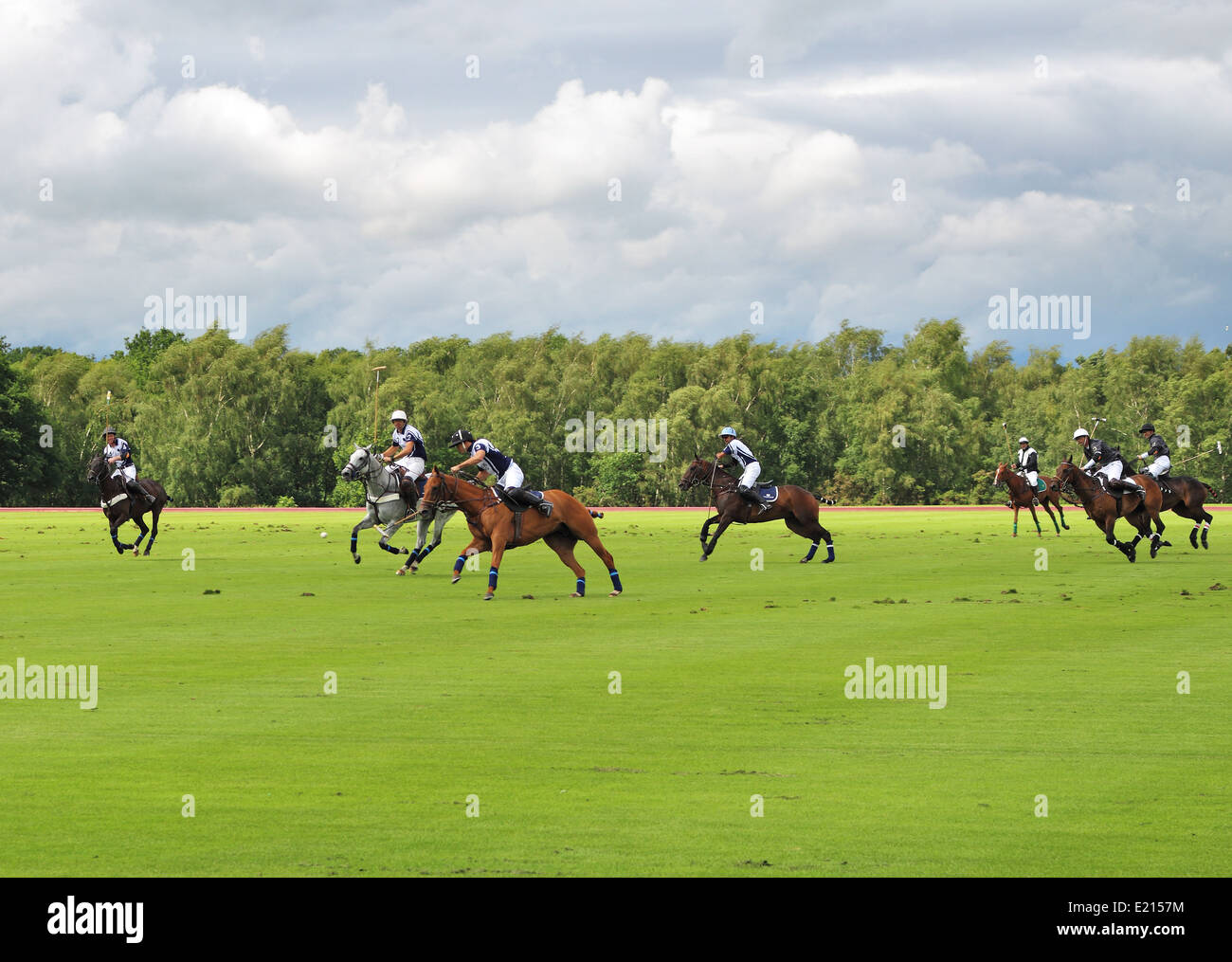 Game of Polo in an English Park - Stock Image