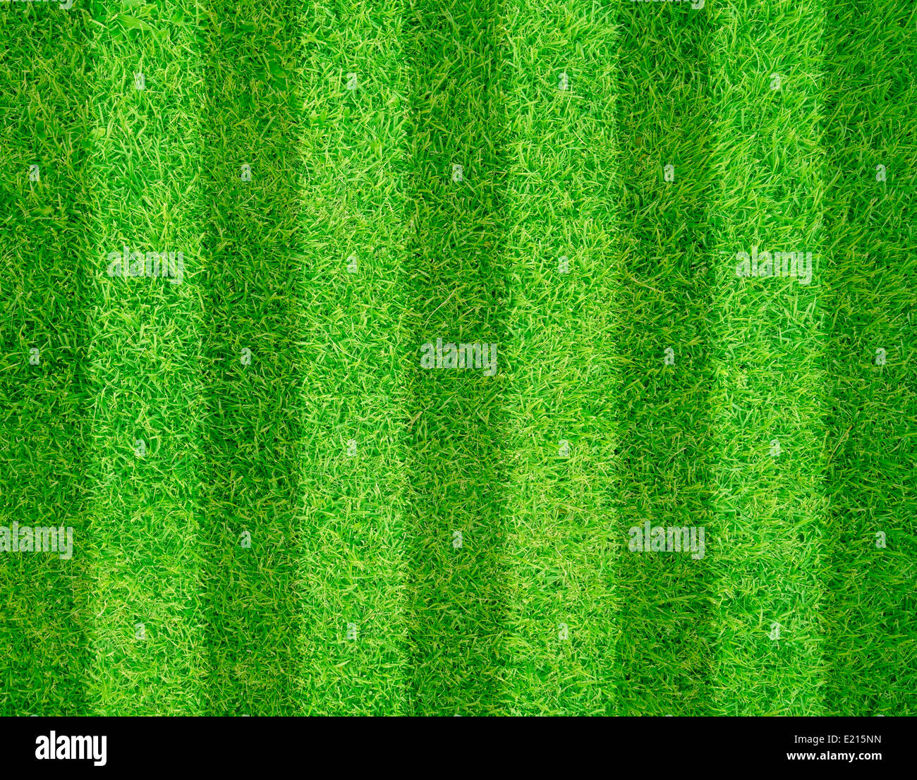 Green Grass Of A Football Soccer Field Background Stock Photo