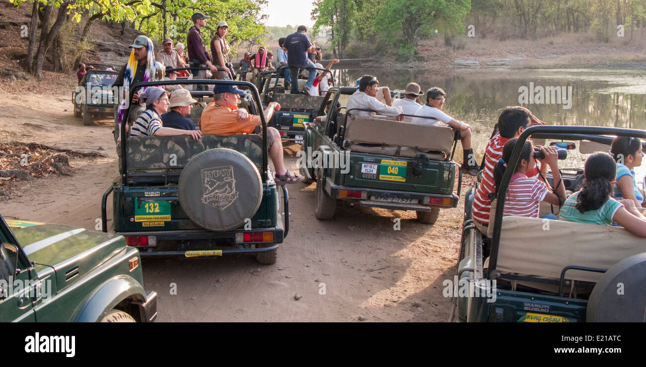 Vehicles and people, Bandhavgarh National Park Madhya Pradesh India Asia - Stock Image