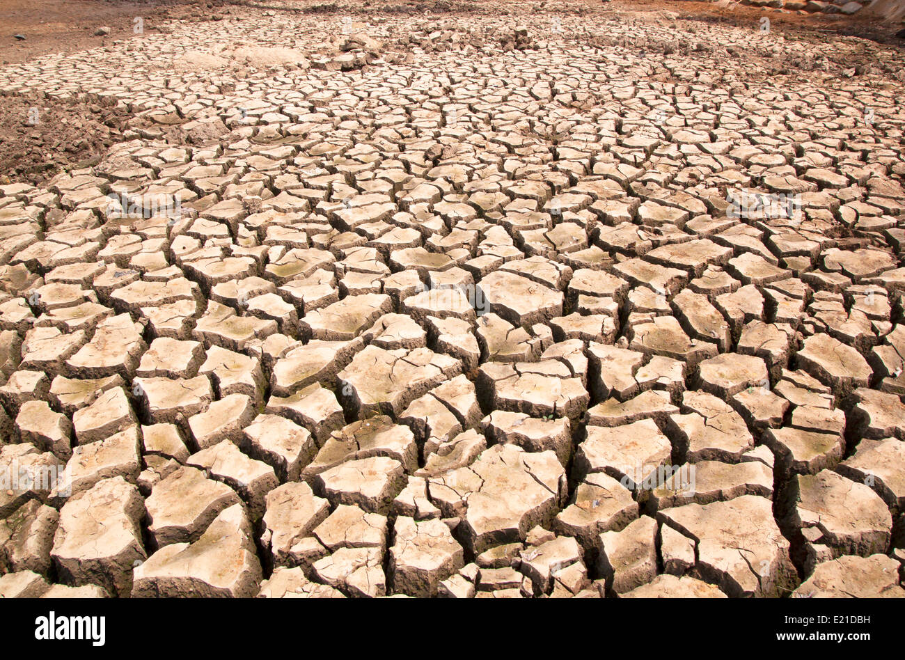 Drought breaks ground fissures of the ground. - Stock Image