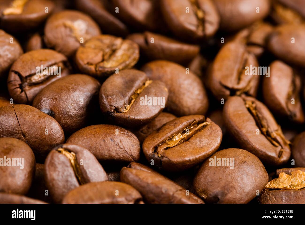 Full of coffee bean - Stock Image