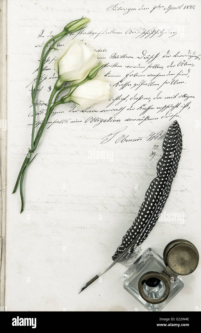 old letter, flower and antique feather pen. romantic vintage background - Stock Image