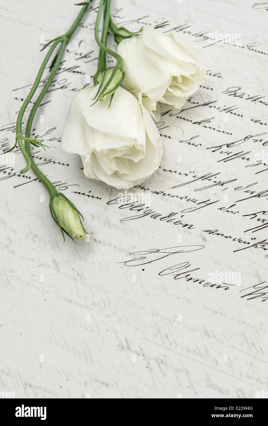 antique handwritten love letter and flowers. nostalgic sentimental background. retro style toned picture - Stock Image