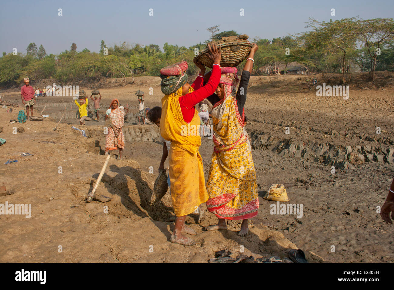 Two  Women labourers carrying heavy basket of earth on head West bangle, India - Stock Image